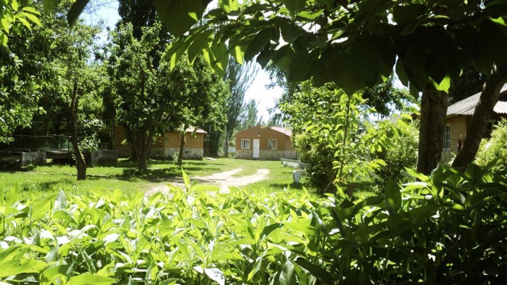Puerta oeste g tes neuqu n argentine for Jardin 6 neuquen