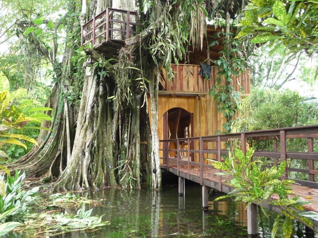 Casa de vacaciones topos tree house cahuita con for Tree house for sale costa rica