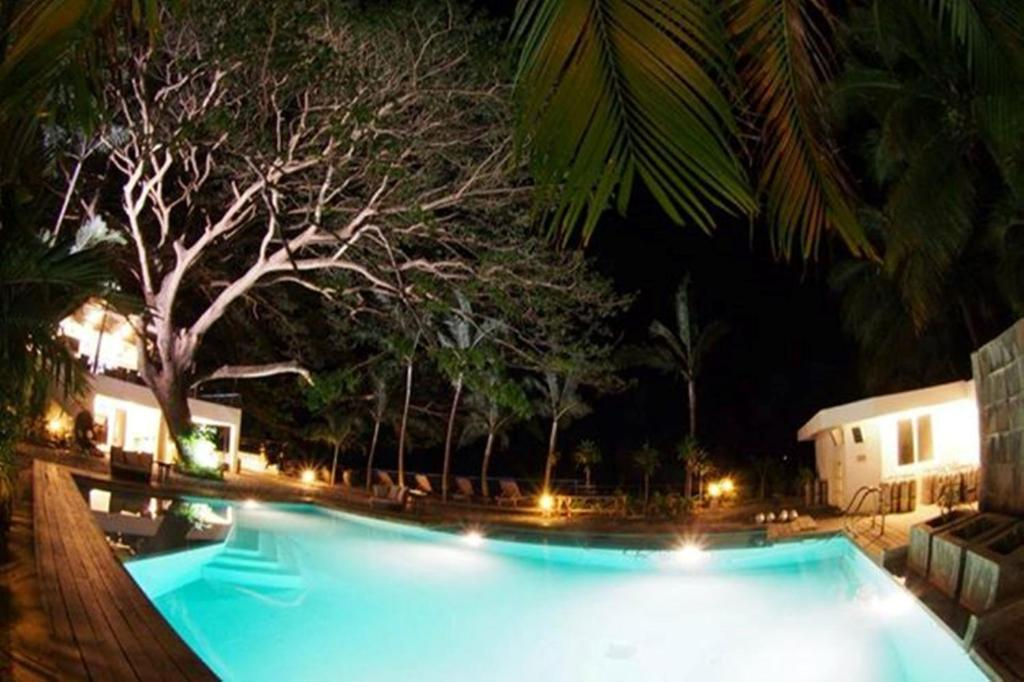 Acacia resort and dive center r servation gratuite sur - Acacia dive resort ...