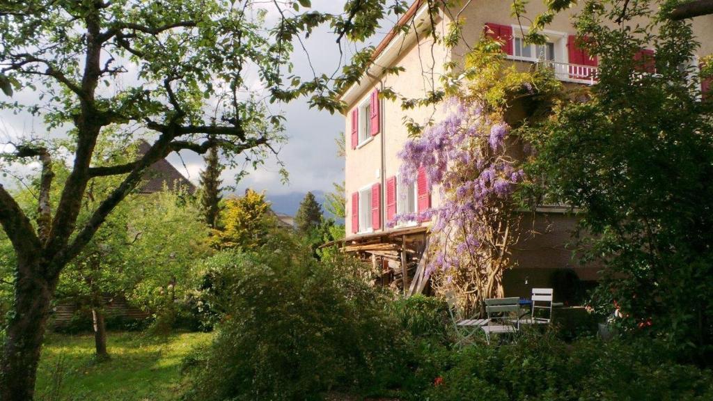 Au jardin zuchwil online booking viamichelin for Jardin tecina booking