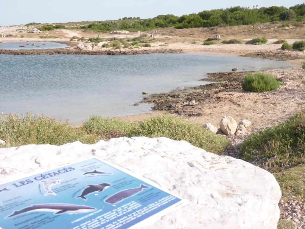 La villa du petit port r servation gratuite sur viamichelin for Piscine petit port
