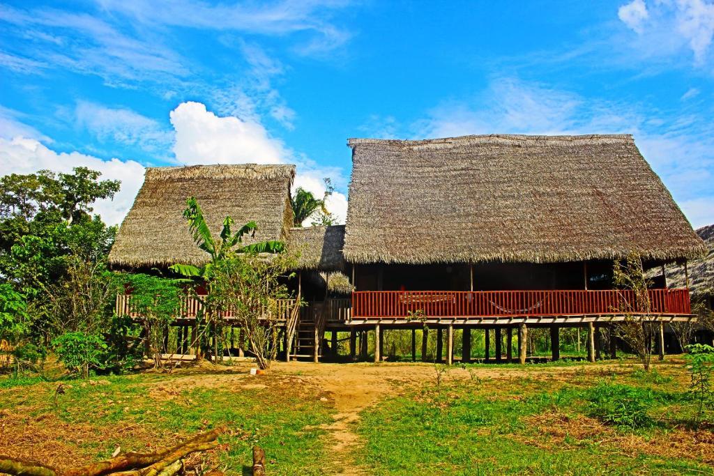 Tuqui Tuqui Amazon