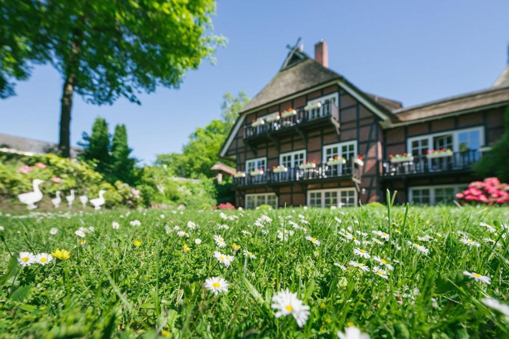 Hotels In Schneverdingen Deutschland