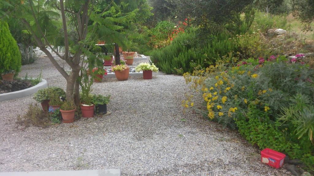 The Olive Branch Villa R 233 Servation Gratuite Sur Viamichelin