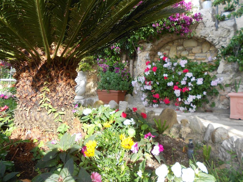 Chambre d 39 h tes de charme la belle vue beausoleil book for Belle ile chambre d hotes