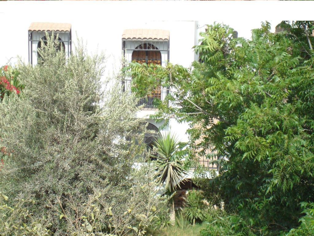 B b el jardin nazca informationen und buchungen online for Jardin online