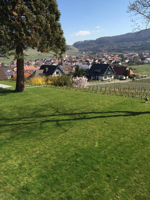 Hotels In Sasbach Am Kaiserstuhl Deutschland