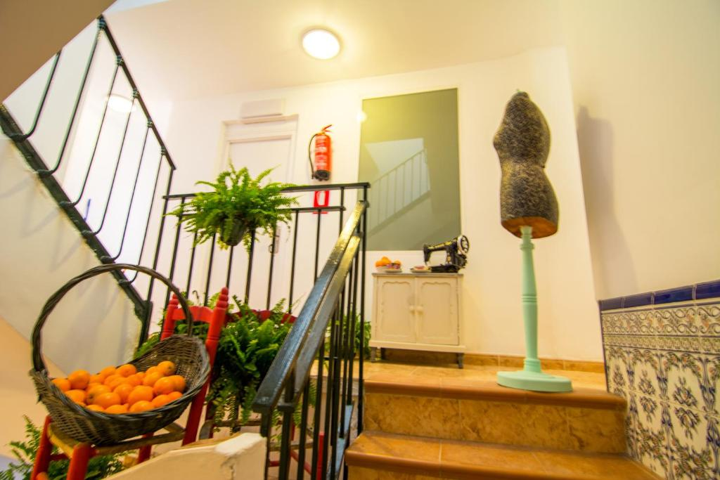 San jos guest house granada book your hotel with for Simple floors san jose