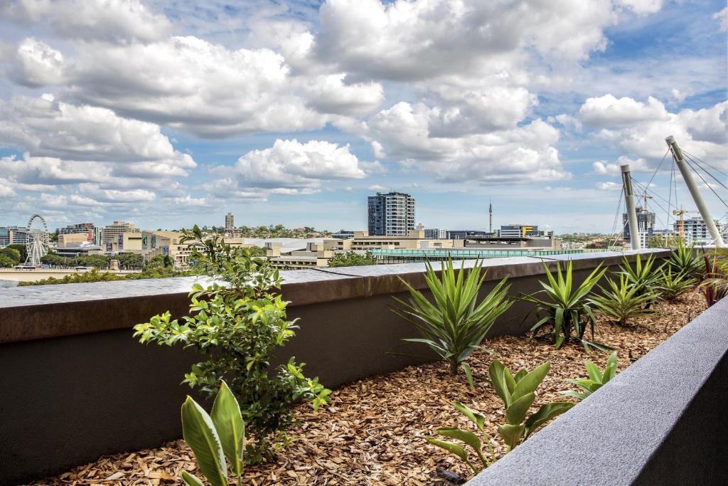 Evolution Apartments Holiday Houses Brisbane