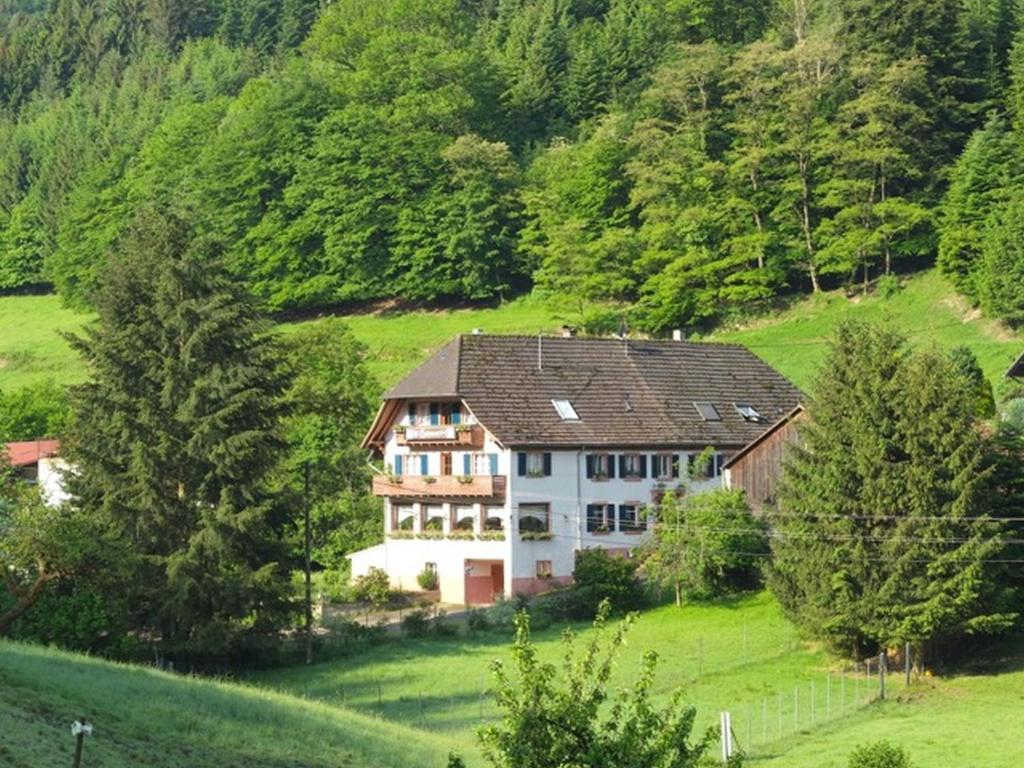 Hotels In Seelbach Deutschland