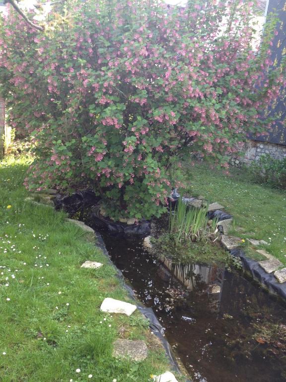 Le jardin secret de louise affitta nei honfleur in le for Le jardin secret