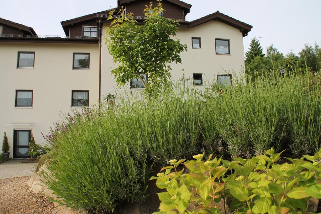 Hotels In Rockenhausen Deutschland