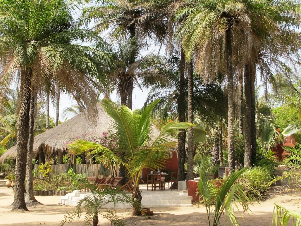 Senegalese Restaurant College Park