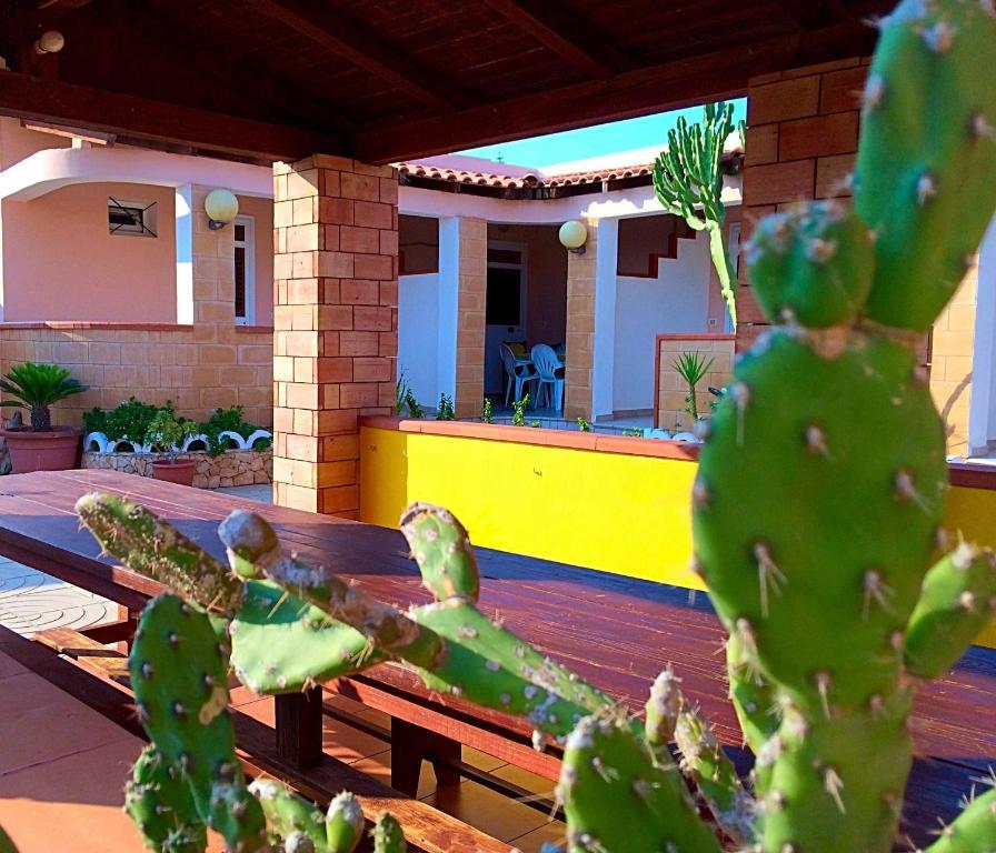 Appartamenti case vacanze jerimar casas de vacaciones for Affitti animali domestici cabina texas