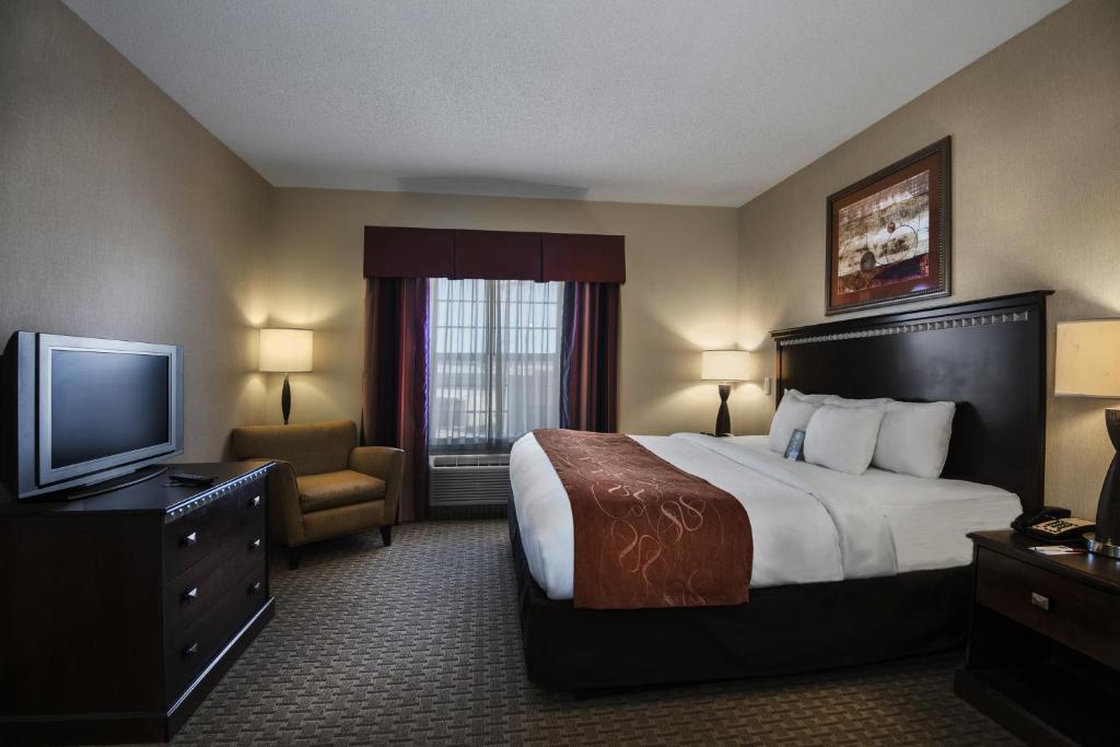 Comfort Suites Conway Conway Prenotazione On Line