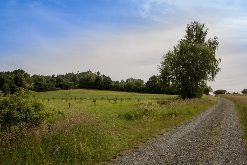 Steinwald Nature Park