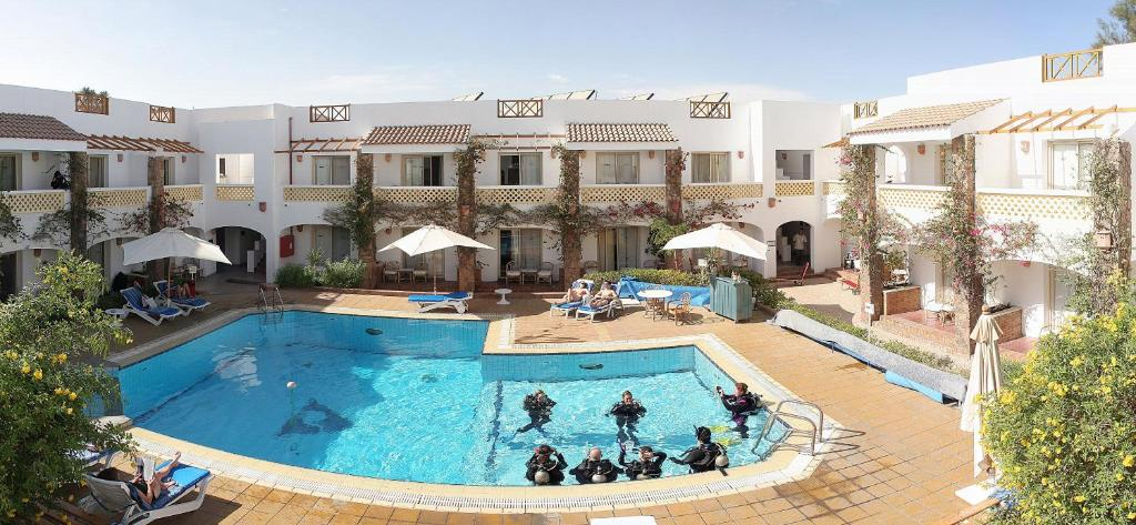 Camel dive club hotel boutique hotel sharm el sheikh - Camel dive hotel ...
