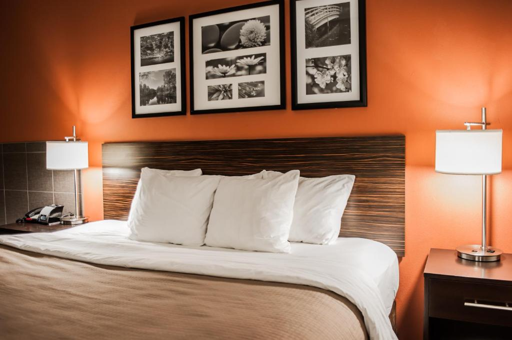 Sleep Inn Amp Suites Fort Campbell Oak Grove Viamichelin