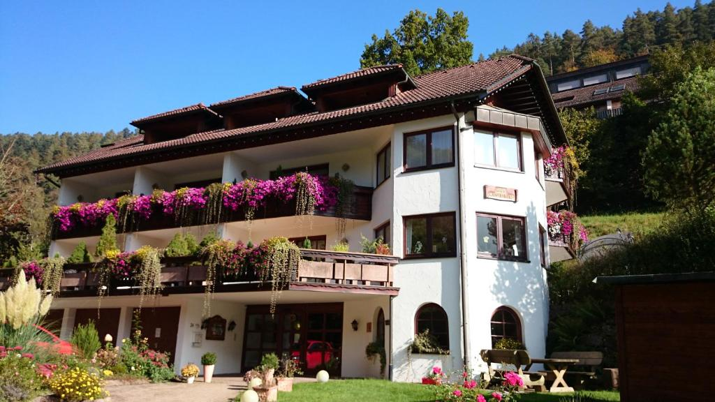 Hotel Bad Teinach Therme