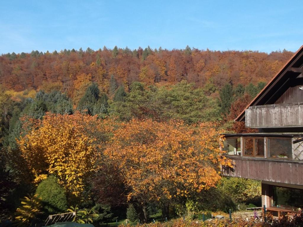 Hotel restaurant berggarten r servation gratuite sur for Reserver hotel payer sur place