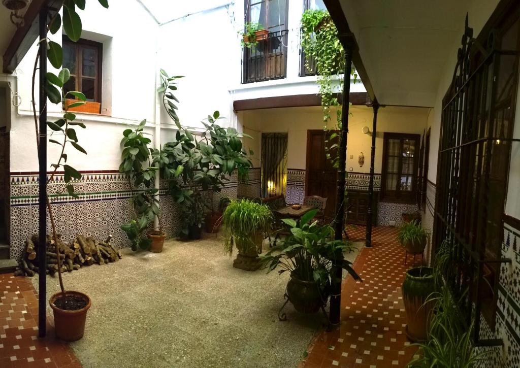 Casa patio de la vega c rdoba book your hotel with - Patios de casas ...