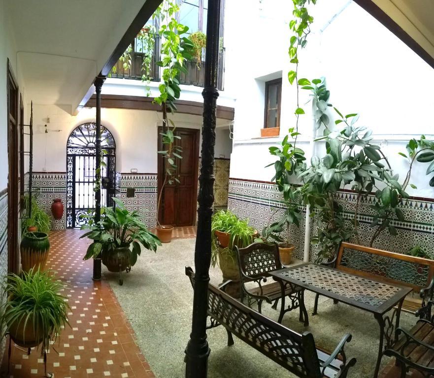 Casa patio de la vega chambres d 39 h tes cordoue - Patios interiores andaluces ...