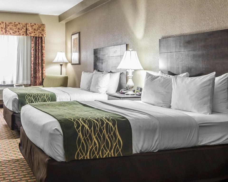 Comfort Inn Amp Suites Kansas City Downtown Kansas City