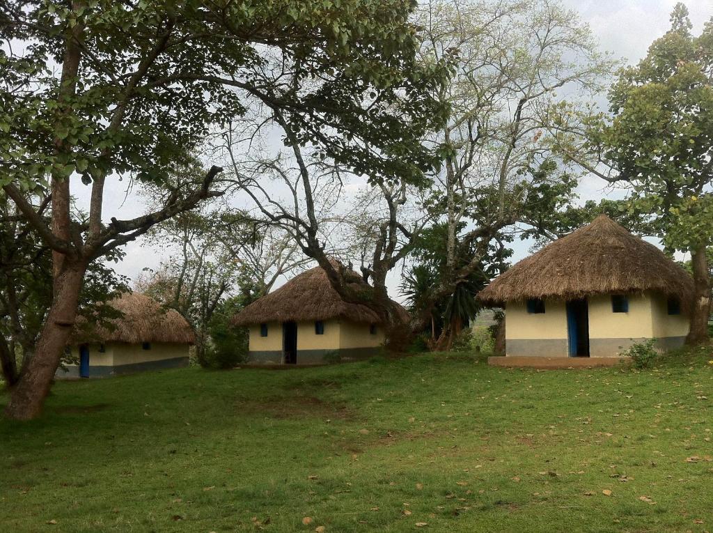 Enfuzi Campsite Lake Nkuruba