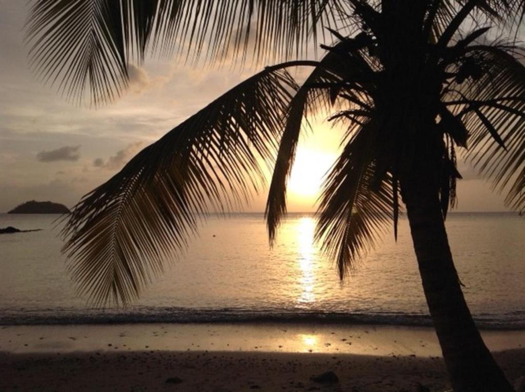 Bungalow proche de la mer sud martinique locations de vacances sainte luce - Sainte luce martinique office du tourisme ...