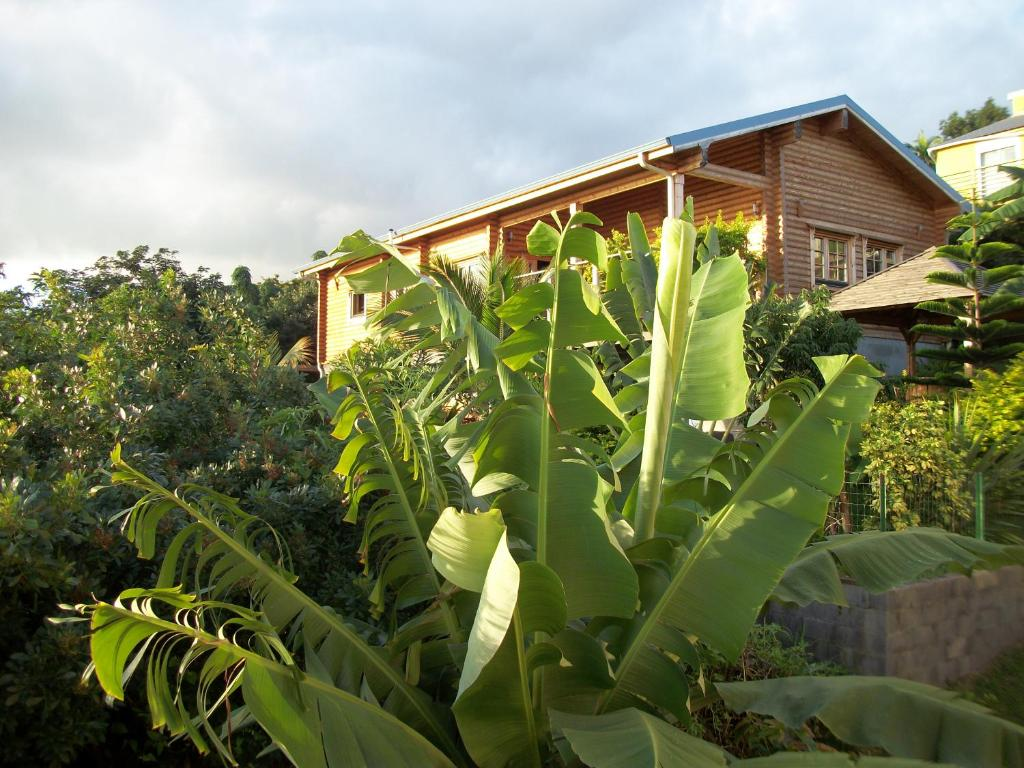 Casa fontaine a eau fontaine jardin leroy merlin vitry - Abri jardin habitat et jardin vitry sur seine ...