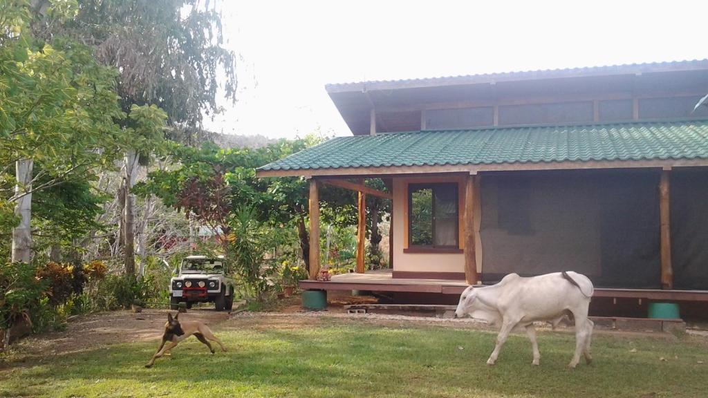 Fidelito ranch lodge cobano prenotazione on line for Piccoli progetti di ranch
