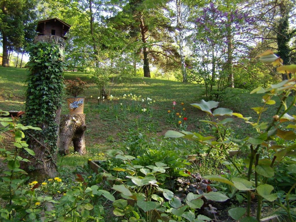 Studios les iris gites et locations monthou sur cher for Piscine iris jardin