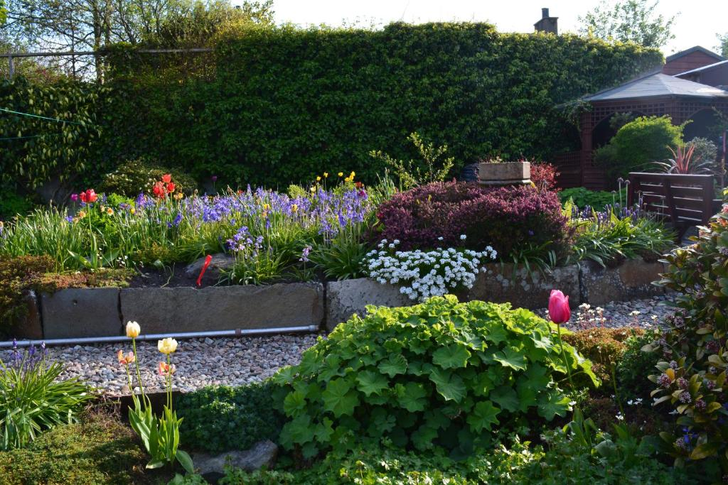 Bed And Breakfast At  Thurso