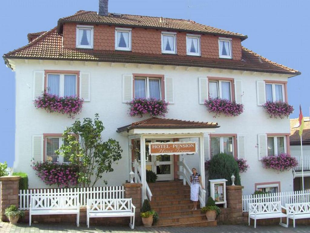 Hotels In Bad Konig Deutschland