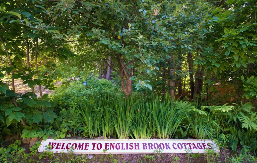 English Brook Cottages Glens Falls North Book Your