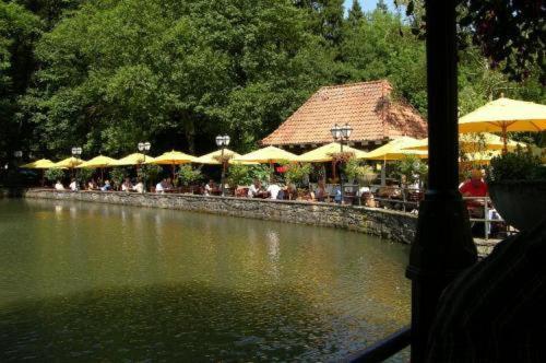 Horn Bad Meinberg Hotel Silbermuhle Wandern