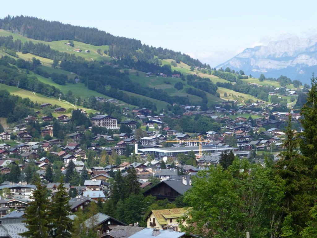 Appartement soldanelles meg ve frankrijk for Hotels 3 etoiles megeve