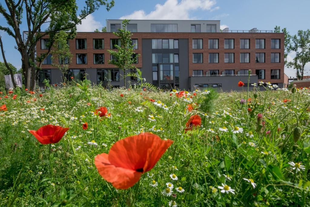 Hotels In Einbeck Deutschland