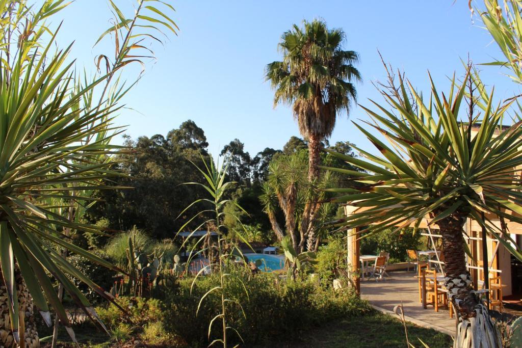 Quinta Pedagógica da Samoqueirinha - Duna Parque Group ... - photo#14