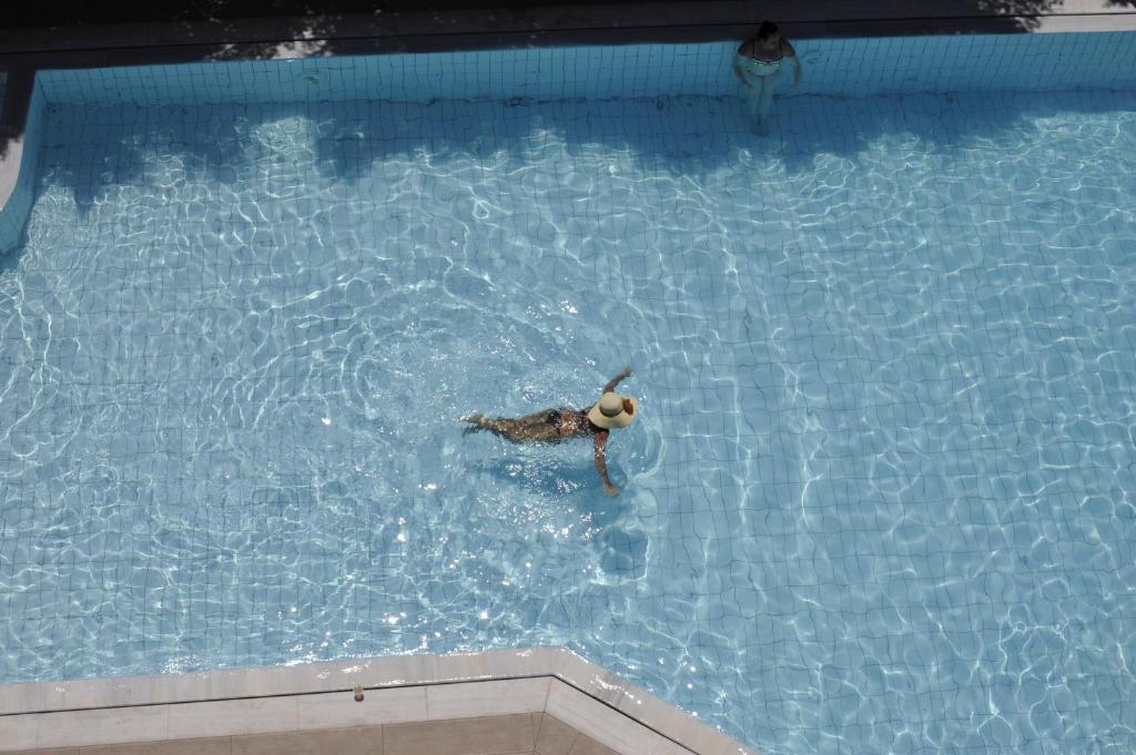 בריכת השחייה שנמצאת ב-Porto Plazza Hotel או באזור