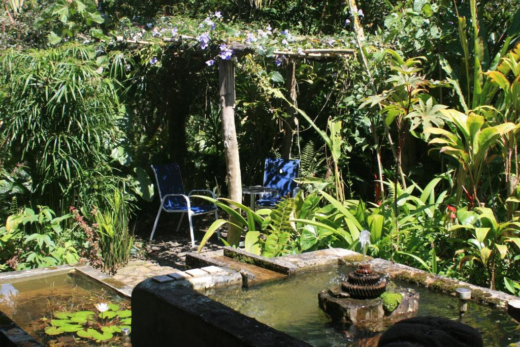 Al alba jardin hotel choach colombia for Jardin tecina booking