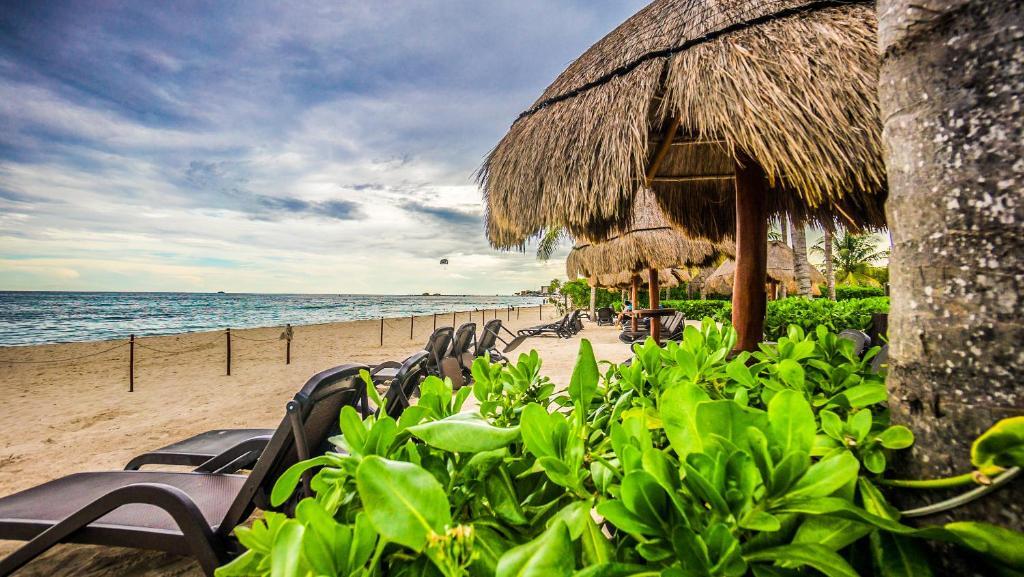 Condo hotel the elements oceanfront beachside playa del for The elements playa del carmen