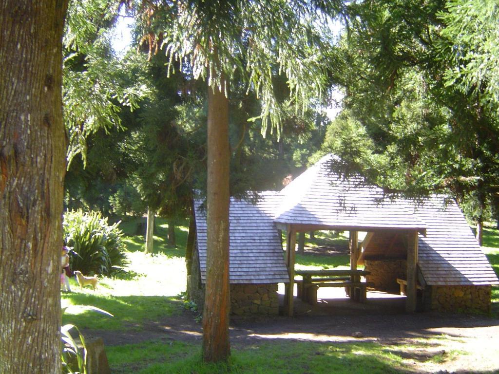 Relais du volcan le tampon reserva tu hotel con viamichelin for Cafres este jardin