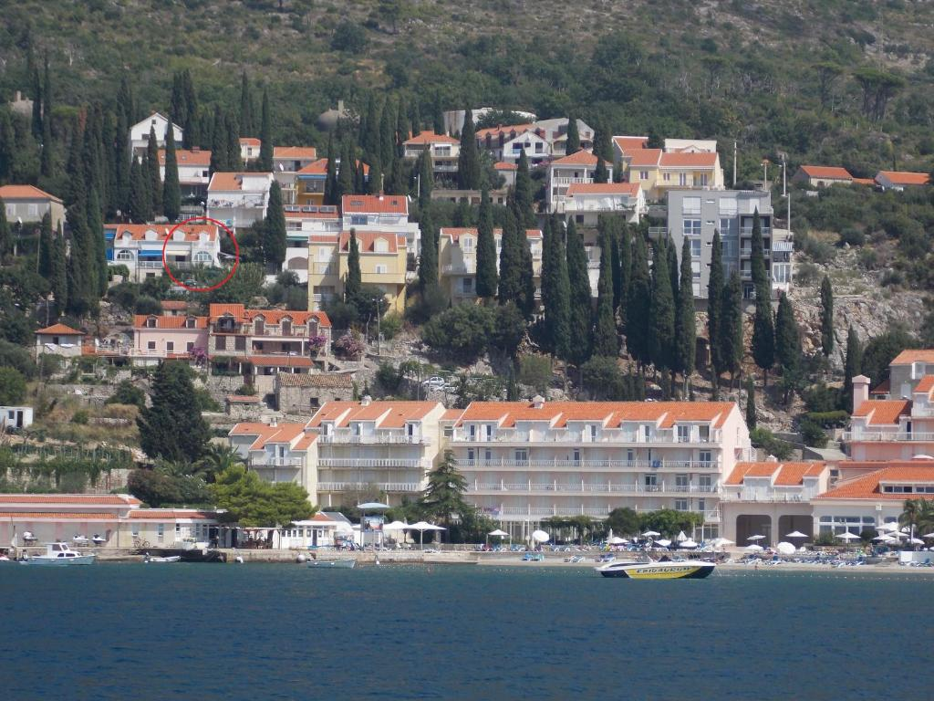 Apartments Zulic