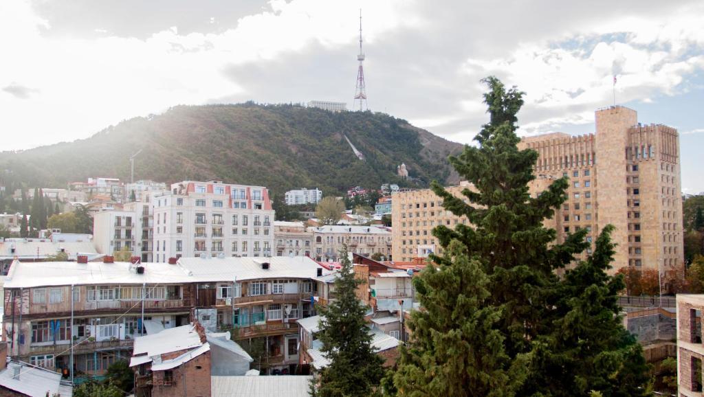 Tbilisi Tskneti Mountain Villa Tbilisi City Georgia: Oasis Apartment, Tbilisi City, Georgia