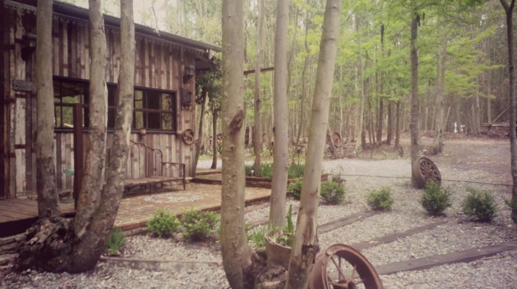 Casa de vacaciones casita en el bosque argentina ramallo - Casitas en el bosque ...