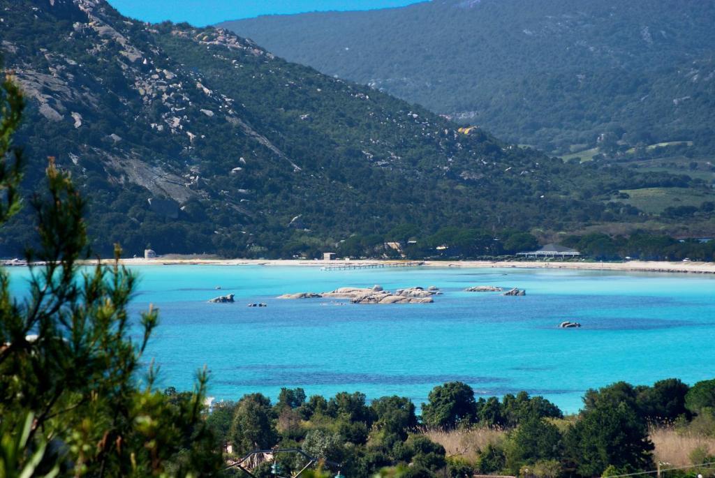 r 233 sidence monte d oro francia porto vecchio booking