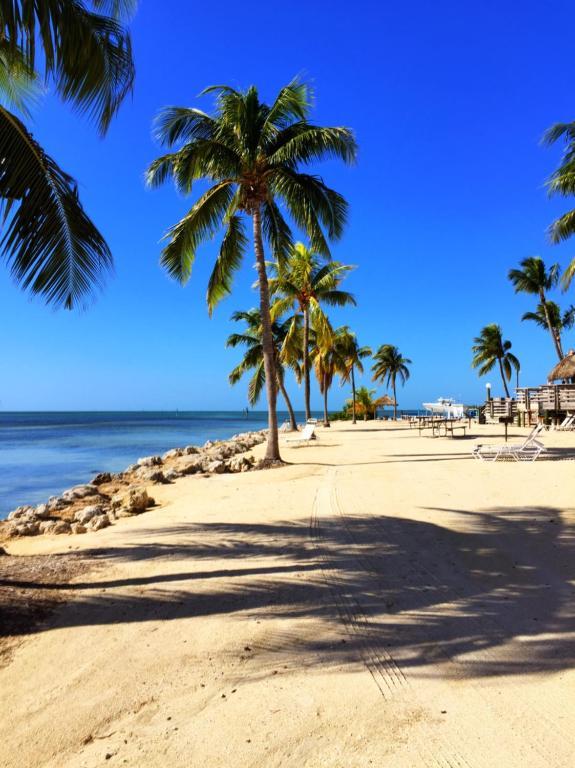 Caloosa Cove Resort Amp Marina Islamorada Fl Booking Com