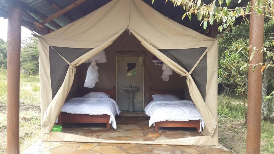 Masaimara Springs Camp