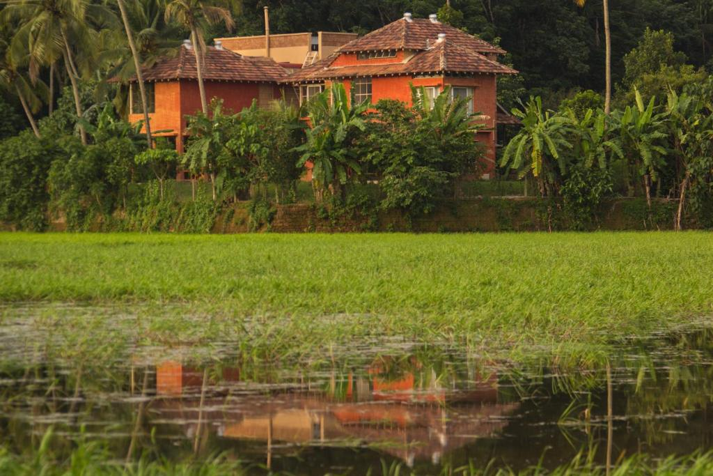 Green Island Resort Cochin